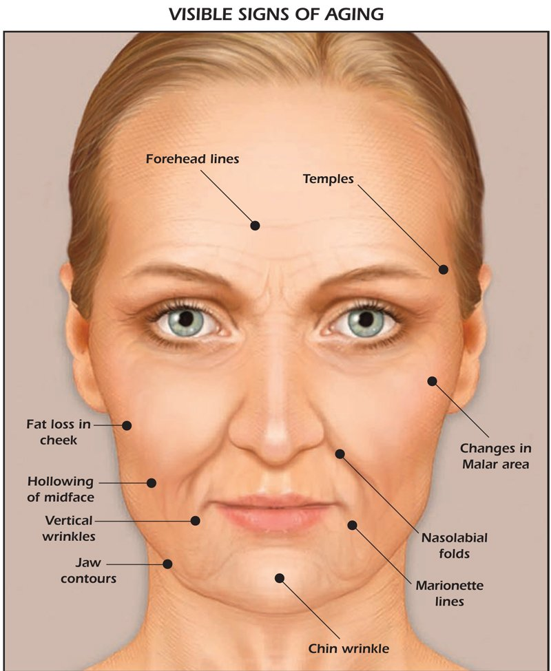 visible signs of aging